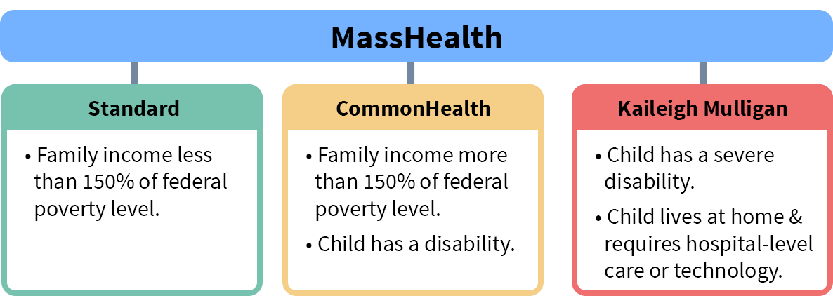image of Mass Health options; Standard, Commonhealth and Kaileigh Mulligan