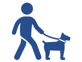 Image of a person walking a dog