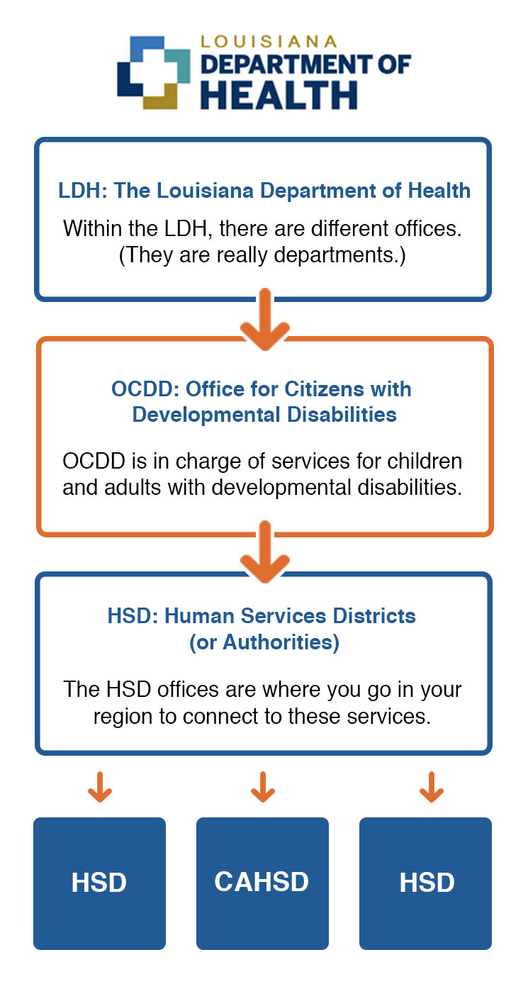 Flowchart showing organization within the Louisiana Department of Health: Within the LDH, there are different offices.(They are really departments.), OCDD is in charge of services for children and adults with developmental disabilities, and The HSD offices are where you go in your region to connect to these services.